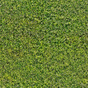 Envy your neighbor's perfect lawn? Get Artificial Grass from Our Green Turf!