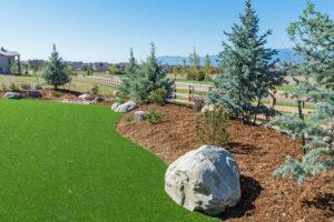 Enjoy Lush Green Grass 365 Days a Year