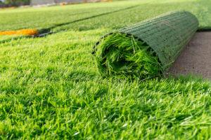 Artificial Grass Versus Live Turf