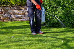 Do I Need to Use Chemical Sprays on my Artificial Grass in Moreno Valley CA?