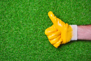 Have Your Cake and Eat it Too with the Installation of Synthetic Grass in Redlands CA