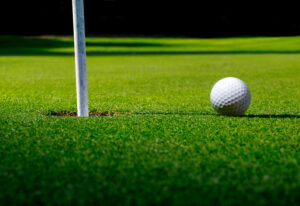 Discover the Numerous Reasons Our Artificial Grass is Perfect for Putting Greens