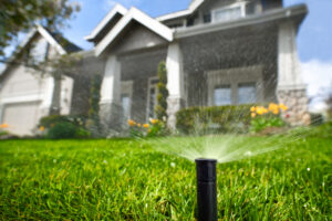 Our Clients Have Saved Millions of Gallons of Water by Installing Artificial Grass